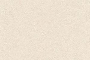 Панели ПВХ «Век» Коллекция 1 Орхидея кремовая цена 220 руб.  за панель купить со скидкой