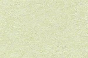 Панели ПВХ «Век» Коллекция 1 Орхидея светло-зеленая цена 220 руб.  за панель купить со скидкой